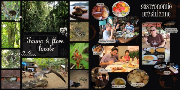 Pages 28-29 - Ilha Grande